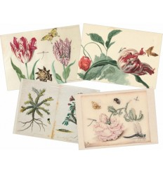 Botanical Paper Placemats